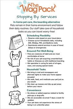 When planning holiday pet care, consider all the benefits of in-home pet sitting!