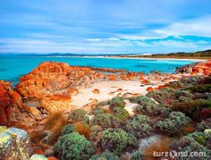 Beer Barrel Beach, St Helens, Bay of Fires, Tasmania - Beach - Photographs - Australia Stock Photos - High quality licensed stock images Beautiful Places To Visit, Beautiful World, Places To See, Beautiful Beaches, Amazing Places, Natural Phenomena, Australia Travel, Amazing Nature, East Coast