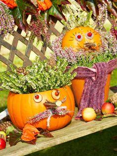 Kürbiskerle als Halloween-Deko mit Heidekraut