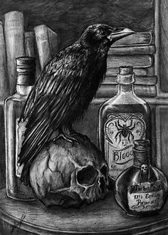 Corvus by Asteri-A on DeviantArt Crow Art, Raven Art, Dark Fantasy, Fantasy Art, Rabe Tattoo, Totenkopf Tattoos, Crows Ravens, Arte Horror, Gothic Art