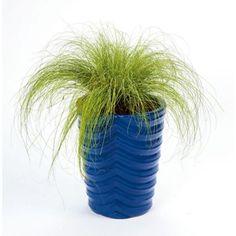 Newquay Planter Blue - 25cm