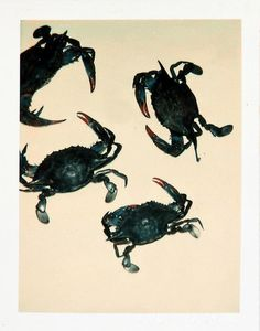 Andy Warhol Crabs, 1982 polaroid photograph 4 x 3 1/4 inches; 10.2 x 8.3 cm PK 12407