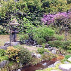 #japan #kyoto #jonangu #shrine #garden #landscape #lantern