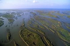 Mississippi River Delta | Discovery Education