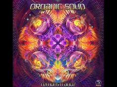 Organic Soup - Happy New Year 2014 SET (Psytrance-GOA-Fullon)