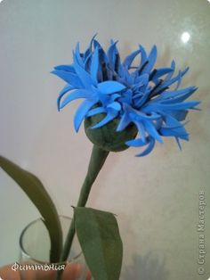 Cornflower tutorial