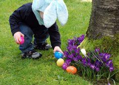 Easter egg hunt ideas.