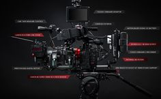 Famed DP Rodrigo Prieto Reveals Why 'Color is King' in this Promo for the Canon C500