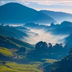 Rays of sun in the morning over Malaysia - http://www.grandescapades.com #travel #destinations #malaysia