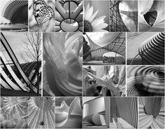 Mimarihaber Doğa ve doğadaki canlıların mimarlık üzerine etkisi [araştırma]