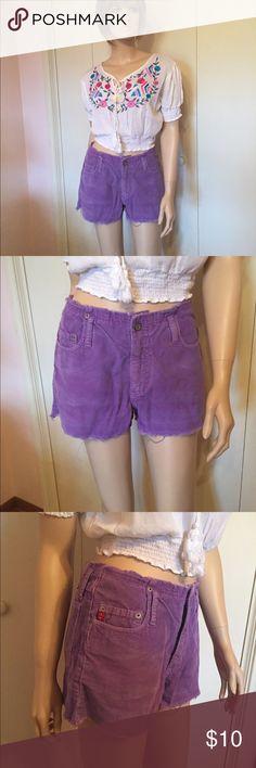 Purple Corduroy Shorts New light purple corduroy shorts with fringed waist and legs. Size 7.  100% cotton retails for $18 l.e.i. Shorts Skorts