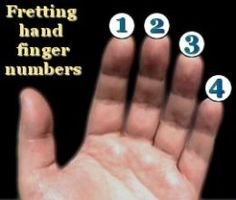 One-finger guitar chords for beginners