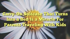 Carry-On Suitcase That Turns Into a Bed Is a Miracle For Parents Traveling With Kids - http://doublebabystrollerreviews.net/carry-on-suitcase-that-turns-into-a-bed-is-a-miracle-for-parents-traveling-with-kids/