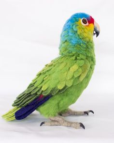 Rico the Red-Lored Amazon Parrot: Needle felted animal sculpture by Megan Nedds of The Woolen Wagon