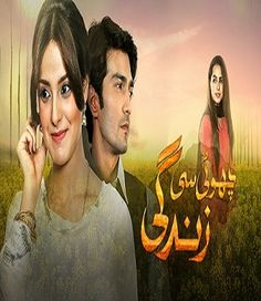 Choti Si Zindagi Episode 4 Hum Tv 25th October 2016