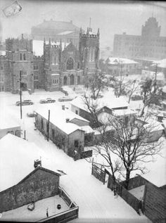 Jan 1949 - Photo shows view looking east from San Antonio LIght Building after snow fall of almost 5 inches. First Presbyterian Church is in upper left and San Antonio Express-News building in upper right. Scottish Rite Temple beyond First Pres. Texas History, Us History, Texas Texans, Church Of Scotland, Lakeside Cabin, Texas Forever, Light Building, Back In The Day, Historical Photos