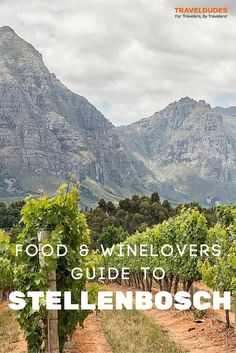 A Food and Wine Lover's Guide to Stellenbosch - With over 200 vineyards to choose from, numerous globally ranked restaurants, a picturesque nature reserve, and a prime location (only 40 minutes from Cape Town), no trip to South Africa is complete without a visit // Traveldudes Social Travel Community: