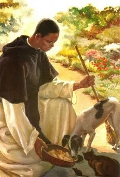 Martín de Porres St Martin is my go-to saint when any of my animals is sick or hurting. He's a wonderful intercessor. Religious Images, Religious Icons, Religious Art, Religious Education, Catholic Art, Catholic Saints, Religion Catolica, Saint Martin, Patron Saints