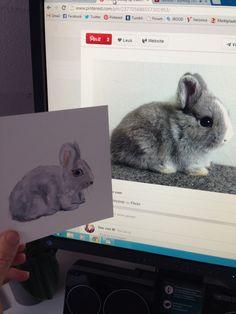 Aquarel bunny