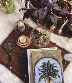 Enchanting and magickal capture from got us feeling all tingly 🌌🌟 Wiccan, Witchcraft, Tarot, Herbal Witch, Forest Book, Pisces And Capricorn, Coin Card, Modern Witch, Witch Aesthetic