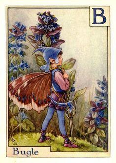 Cicely Mary Barker ~ The Bugle Flower Fairy