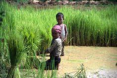 168 millions d'enfants travaillent dans le monde !