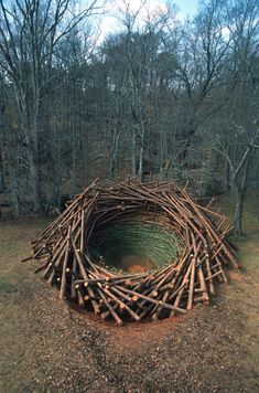 This is the Clemson Clay Nest--an 80-ton bird nest constructed by environmental artist Nils Udo out of bamboo, logs, earth, and clay.