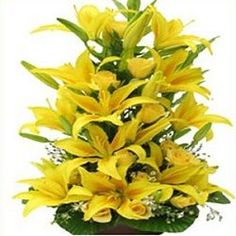 Best bouquet of flowers you can present to your loved ones.
