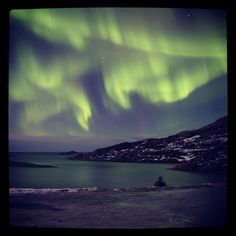O.M.G what a night. From drizzle rain we did not expect to get this experience. Only one word to describe it. F**n A.M.A.Z.I.N.G #visitnorway #ilovenorway #visittromsø #tromsø #tromsøsafari #travelgram #adventure #auroraborealis #nothernlights #photograhy #photo #photooftheday #bestoftheday #snowsafari #geezers #winter #nordlys #articlight #beautiful #amazing #picture #night #instagramhub #instatravel #instapic #instaTBN #TravelStoke #igers #igernorway #BestVacations Visit Norway, Tromso, Words To Describe, Best Vacations, Aurora Borealis, Insta Pic, Northern Lights, Around The Worlds, Rain