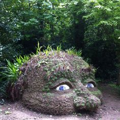 Giant head sculpture at the Lost gardens of Heligan