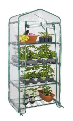 4 Tier Mini Greenhouse Grow Outdoors Starters Vegetable Herbs Patio Back Porch  #BestChoiceProducts