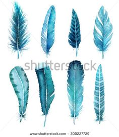 Image result for watercolor feather
