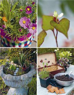 Teeny Tiny Gardening + Interview —design*sponge