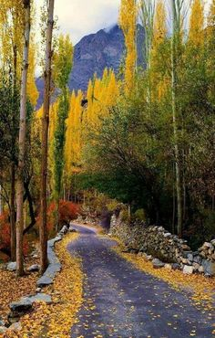 Beautiful Autumn in Hunza valley, Gilgit Baltistan Pakistan Karakorum Highway, 2 Weeks In Thailand, Wonderful Places, Beautiful Places, Beautiful Roads, Hunza Valley, Pakistan Travel, Pakistan Army, Karachi Pakistan