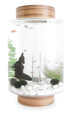 Dissatisfied with a few crucial flaws in current fish tanks, designer Charles Törnros and his team in Sweden decided to completely redesign the home aquarium to create a minimal, beautiful object that is also customizable.