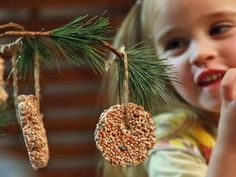 Hanging Birdfeeders  - Kids will love helping to mix, shape and hang this simple project.  step-by-step instructions