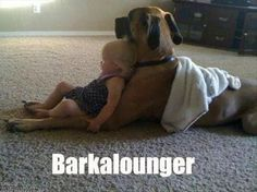 big-dogs-and-little-kids-2