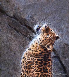 Posing Leopard - Erie Zoo