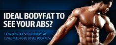 What Is The Ideal Bodyfat To See Your Abs? - http://www.about-muscle.com/articles/what-is-the-ideal-body-fat-to-see-your-abs.php