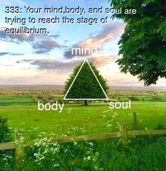 Mind Body Soul, Body And Soul, Apocalypse Aesthetic, Spirit Soul, Manifestation Law Of Attraction, Clear Your Mind, Practical Magic, Anxiety Relief, My Brain