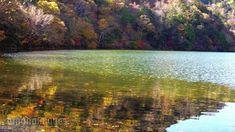奥日光 湯の湖の紅葉[15249000263]の映像素材・動画素材。アマナイメージズでは、人物や風景、空撮など、フルHDの高品質で美しい映像素材を12万点以上販売。CMやテレビ番組などの映像制作のほか、WEBでの使用も可能です。