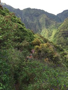 Hiking the famed Kalalau Trail on Kauai isn't for the faint of heart—but with the right preparation and a determined mindset, travelers enjoy it regardless of the outcome.