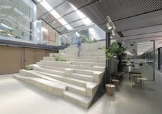 O-office Architects, work studios, plant house, green work-studio, green offices, garden office space, green work space, plants for office space, locally-sourced materials, timber and glass buildings, Guangzhou plant house, Chinese architecture, plant infused buildings, garden space, urban gardens, greenhouse, reformed greenhouse