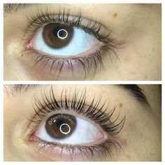 00a970a8740 Eyelash lift and tint 🚫Not Extentions🚫 by @feeltheheal Eyelash Lift And  Tint,