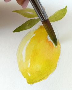 💙 As requested, today I decided to share a step by step of a cornflower with you guys! Watercolor Fruit, Watercolor Cards, Watercolour Painting, Painting & Drawing, Watercolors, Watercolour Tutorials, Watercolor Techniques, Let's Make Art, Learn To Paint