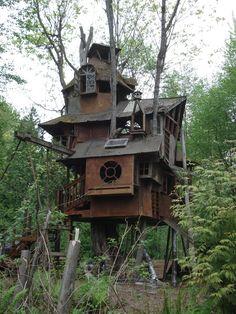"""steampunktendencies: """"Tree House in Redmond"""""""