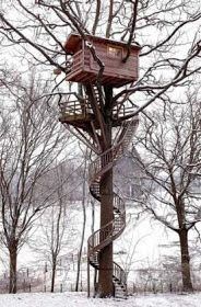 Cool Things | Pictures | Videos: Cool Treehouses from around the World