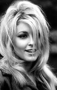 Sharon Tate 1943-1969 (age 26)