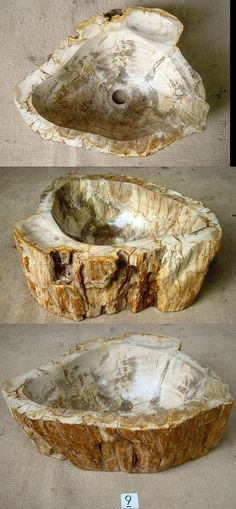 Petrified Wood Sink #9A Made from Petrified Teak (18