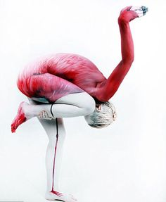 pink flamingos - Wenn Models